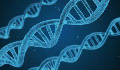 DNA pairing